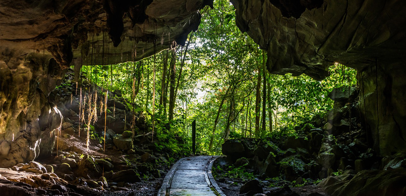 Things to bring when travelling to Mulu Park for your adventure tour