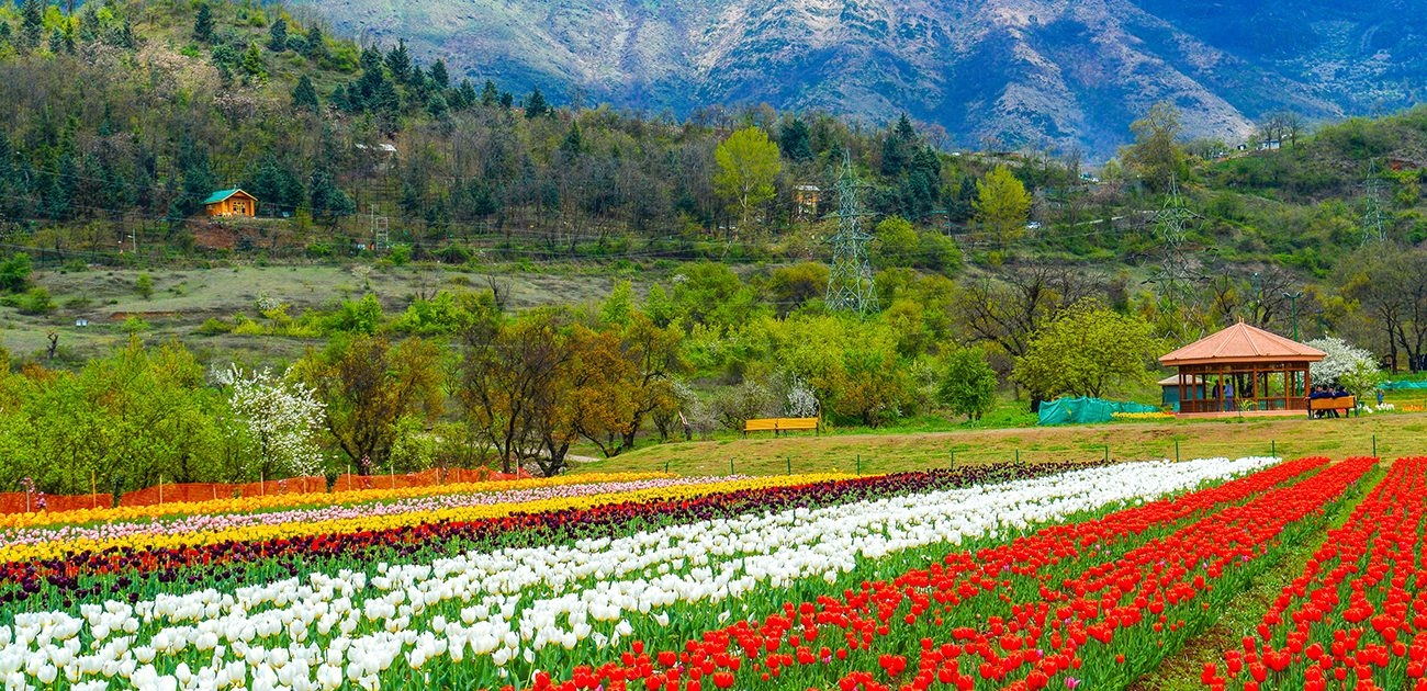"""TOP 5 BEAUTIFUL PLACES IN KASHMIR"""