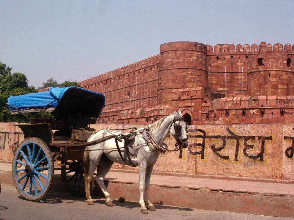 horse carriage outside Agra Fort, India