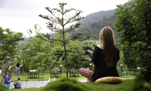7 Actionable Ayurvedic Tips for Healthy Life