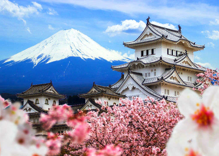Why You Should Visit Japan