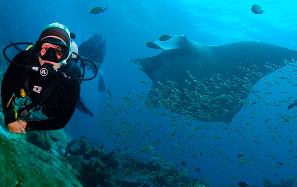 Interview: Scuba Diving with Wendy Kluyt