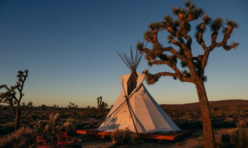 Luxury Camping in Nature in California