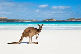 The 5 Best Places to Buy Property in Australia